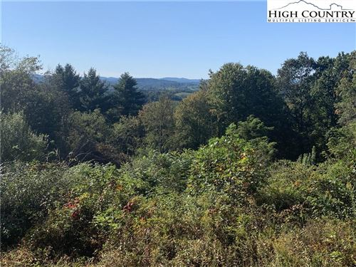 Photo of 48-2-20 Kindreck Road, Mouth of Wilson, VA 24363 (MLS # 226241)