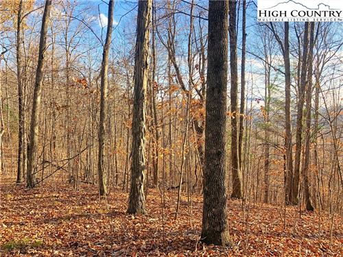 Photo of Lot T-4 Grace Mountain Road, Todd, NC 28684 (MLS # 219242)