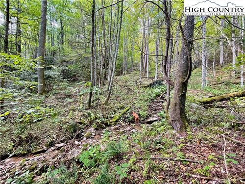 Photo of #32 Winterberry Trail, Boone, NC 28607 (MLS # 233243)