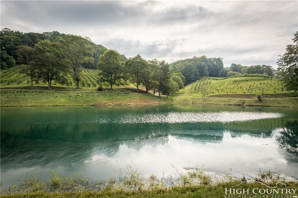 Photo for 2912 Mountain Dale Road, Vilas, NC 28692 (MLS # 201244)