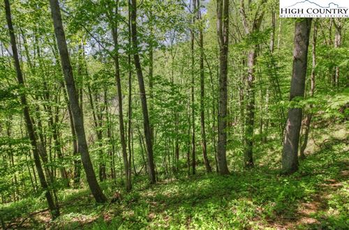 Photo of Lot 7 Yasmine Lane, Vilas, NC 28692 (MLS # 214250)