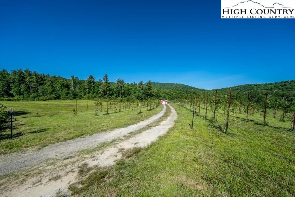 Photo for 6258 Gragg Avenue, Newland, NC 28657 (MLS # 231273)