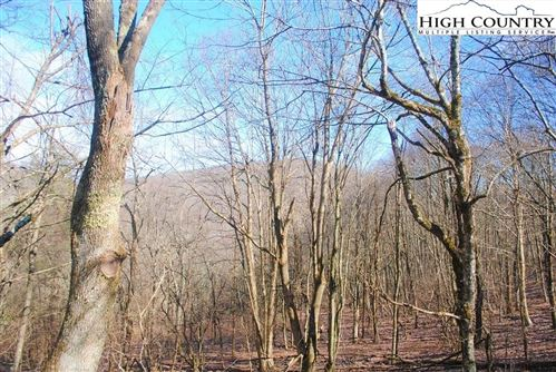 Photo of Tract 4 Saddle Road, Boone, NC 28607 (MLS # 220275)