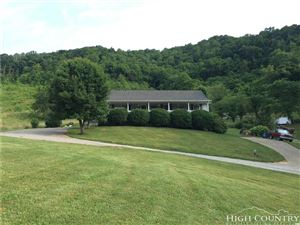 Photo of 7375 Old Us Highway 421, Zionville, NC 28698 (MLS # 213277)