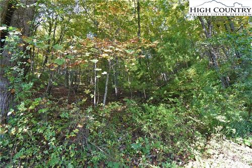 Photo of TBD Panther Creek Road, Troutdale, VA 24378 (MLS # 232282)
