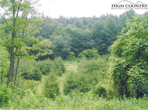 Photo of 590 Low Gap Road, Jefferson, NC 28640 (MLS # 233289)