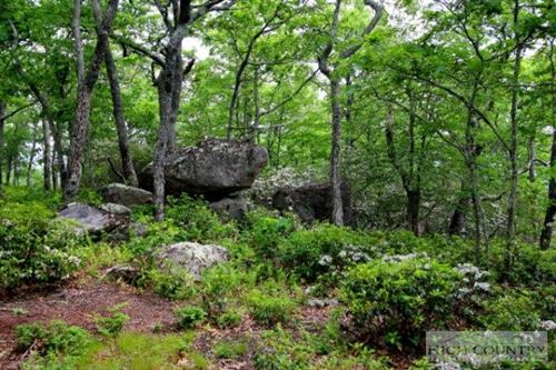 Photo of Lot P1&2 Point Lookout Lane, Independence, VA 24348 (MLS # 195307)