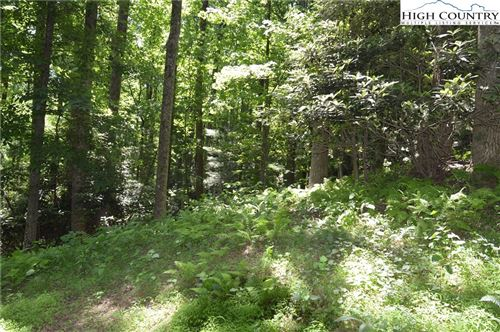Photo of Lot #35 Green Mountain Road, Sparta, NC 28675 (MLS # 231314)