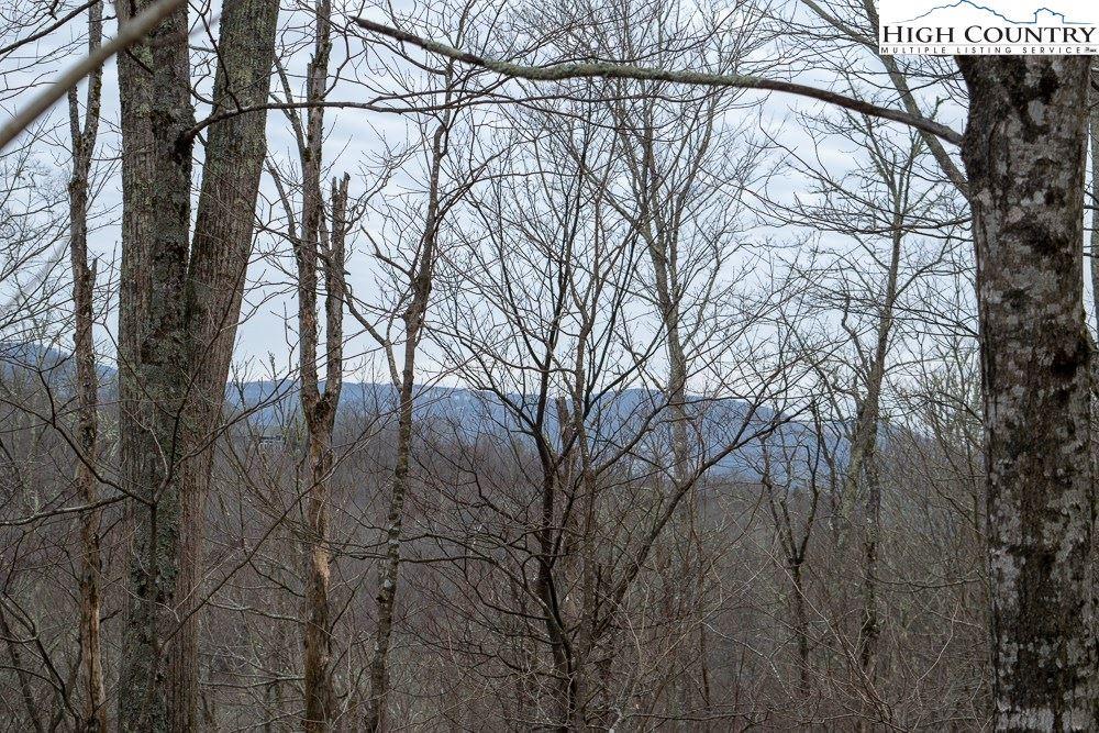 Photo of TBD Grouse Moor Drive, Sugar Mountain, NC 28604 (MLS # 220329)