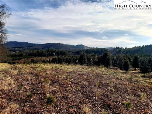 Photo of TBD Woodrow Bare Road, Laurel Springs, NC 28644 (MLS # 220343)
