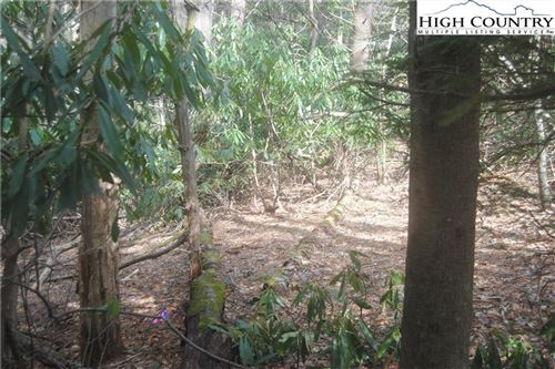 Photo of Tract 6 Hiview Drive, Blowing Rock, NC 28605 (MLS # 229352)