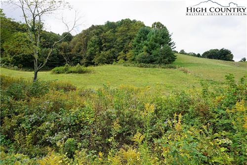 Photo of TBD Grant Houck Road, Todd, NC 28684 (MLS # 222364)