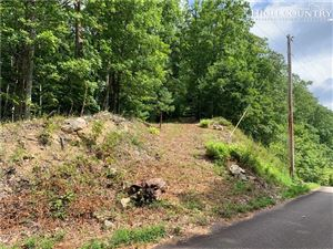 Photo of Lot #9 Iroquois Road, Mountain City, TN 37683 (MLS # 217366)