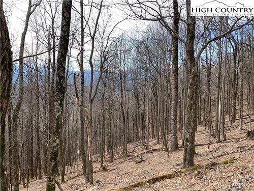 Photo of TBD Rocky Knob Road, Lenoir, NC 28645 (MLS # 220379)