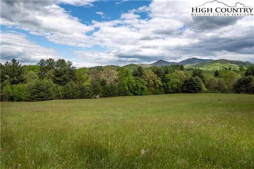 Tiny photo for 99999 Charlie Brown Road, Burnsville, NC 28714 (MLS # 229390)