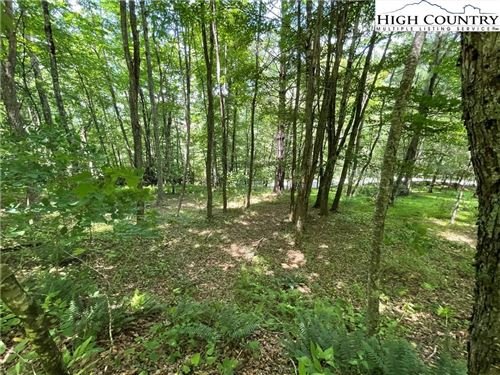 Photo of TBD Red Maple Lane, Boone, NC 28607 (MLS # 232408)
