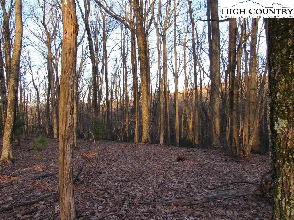 Photo of Lot 23 Deer Park Lane, Sparta, NC 28675 (MLS # 220414)