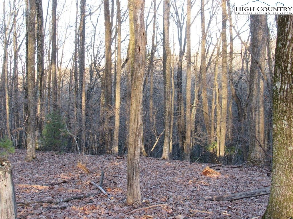 Photo of Lot 24 Deer Park Lane, Sparta, NC 28675 (MLS # 220417)