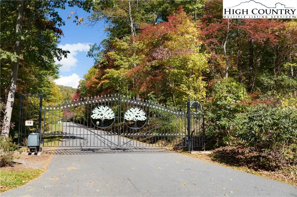 Photo of Lot 58 Fire Pink, Boone, NC 28607 (MLS # 233434)