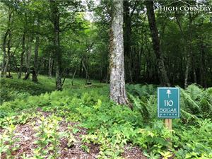 Photo of TBD Cloud Springs Drive, Sugar Mountain, NC 28604 (MLS # 216451)