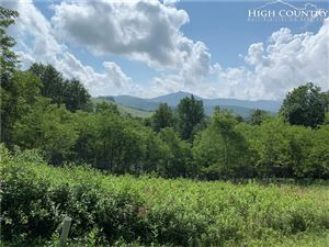 Photo of Lot 19 Banner Grande Court, Banner Elk, NC 28604 (MLS # 216452)