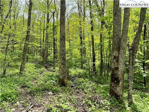 Photo of Lot #42 Cross Park Drive, Sugar Mountain, NC 28604 (MLS # 229453)