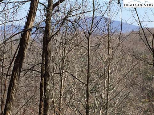 Photo of 1660 Tucker Road, Lansing, NC 28643 (MLS # 233460)
