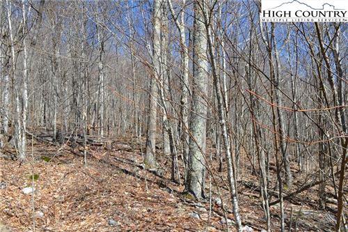 Photo of TBD Holiday Lane, Whitetop, VA 24292 (MLS # 231468)