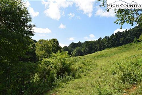 Photo of 3117/3119 Highway 88, Zionville, NC 28698 (MLS # 220471)