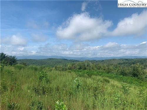 Tiny photo for TBD Mulberry Keys Road, Millers Creek, NC 28651 (MLS # 224480)