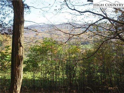 Photo of Tbd Elk Creek Mountain Parkway, Todd, NC 28684 (MLS # 226484)