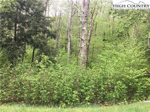 Photo of Lot 24 Linville River Lane, Linville, NC 28646 (MLS # 228490)