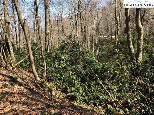 Photo of 104 Tiger Lily Trail, Beech Mountain, NC 28604 (MLS # 229493)