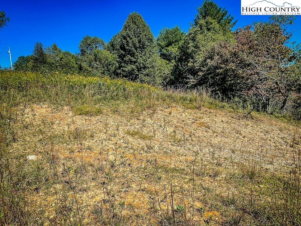 Photo of tbd Deer Meadows Lane, Boone, NC 28607 (MLS # 233500)