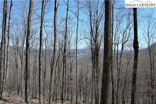 Photo of TBD Little Tree Road, West Jefferson, NC 28694 (MLS # 230517)