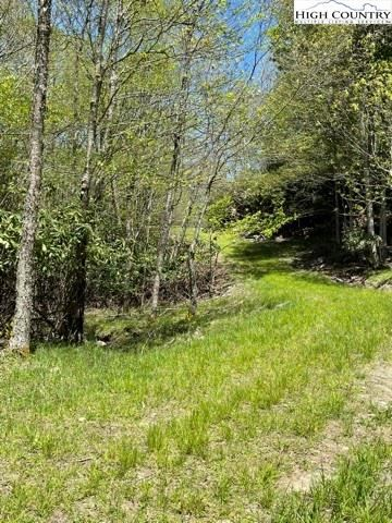 Tiny photo for 101 Indian Trail S. Trail, Beech Mountain, NC 28604 (MLS # 230529)