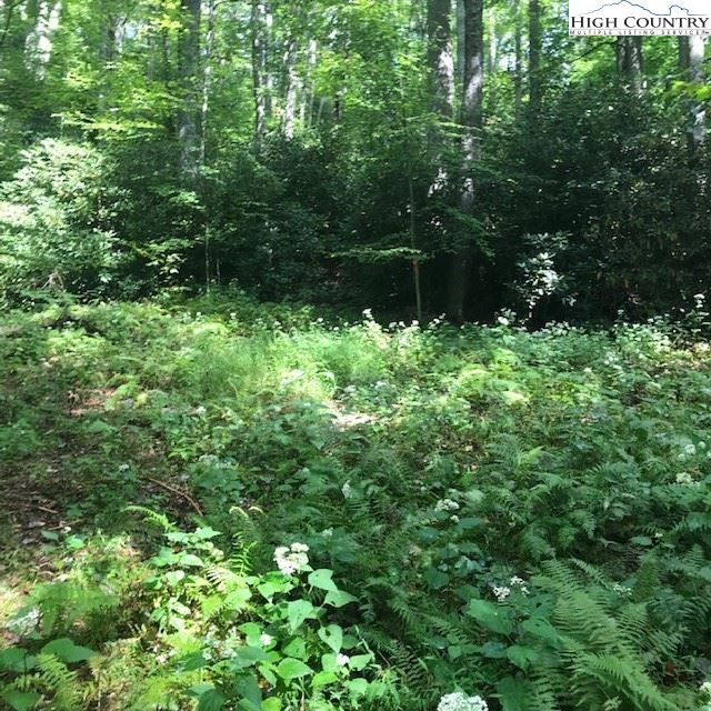Photo of tbd Old Turnpike Road, Boone, NC 28607 (MLS # 224531)