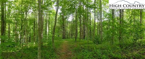 Photo of TBD John Greer Road, Elk Park, NC 28622 (MLS # 231552)