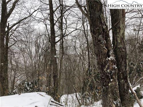 Photo of 142 Lower Snowbird Road, Beech Mountain, NC 28604 (MLS # 220555)