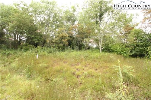 Photo of 132 Point Lookout Lane, Independence, VA 24348 (MLS # 220557)
