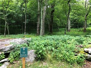 Photo of TBD Cloud Springs Drive, Sugar Mountain, NC 28604 (MLS # 216559)