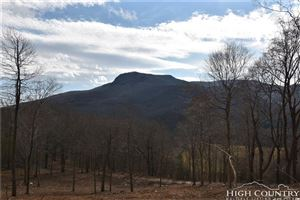 Photo of TBD Ray's Mtn Road, West Jefferson, NC 28694 (MLS # 212561)