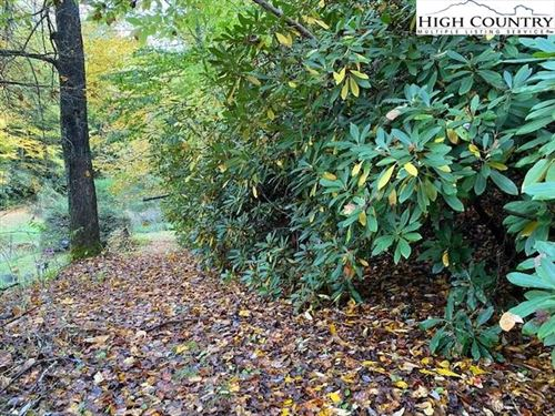 Photo of tbd Soup Bean Branch, Creston, NC 28615 (MLS # 233564)