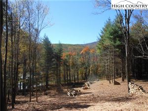 Photo of Lot 7 Twin Branches Road, Blowing Rock, NC 28605 (MLS # 218566)