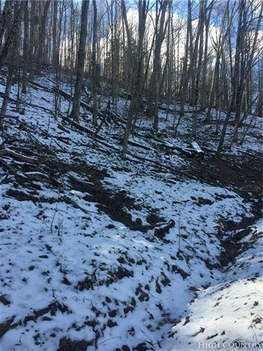 Photo of 118 Red Fox Lane, Beech Mountain, NC 28604 (MLS # 212576)