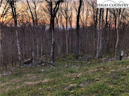 Photo of Lot 10 Fox Crest, Beech Mountain, NC 28604 (MLS # 214576)