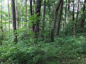 Photo of TBD Moss Hill Road, Boone, NC 28607 (MLS # 216577)