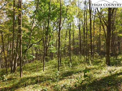 Photo of Lot 5 Meadow Lane, Newland, NC 28657 (MLS # 227587)
