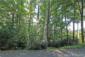 Photo of Lot 84 Quail Roost Drive, Boone, NC 28607 (MLS # 209609)