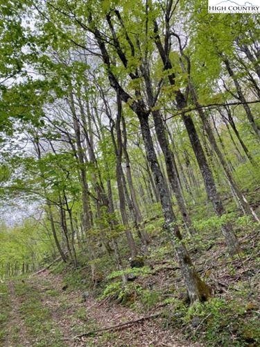 Photo of TBD Pioneer Path, West Jefferson, NC 28694 (MLS # 230611)